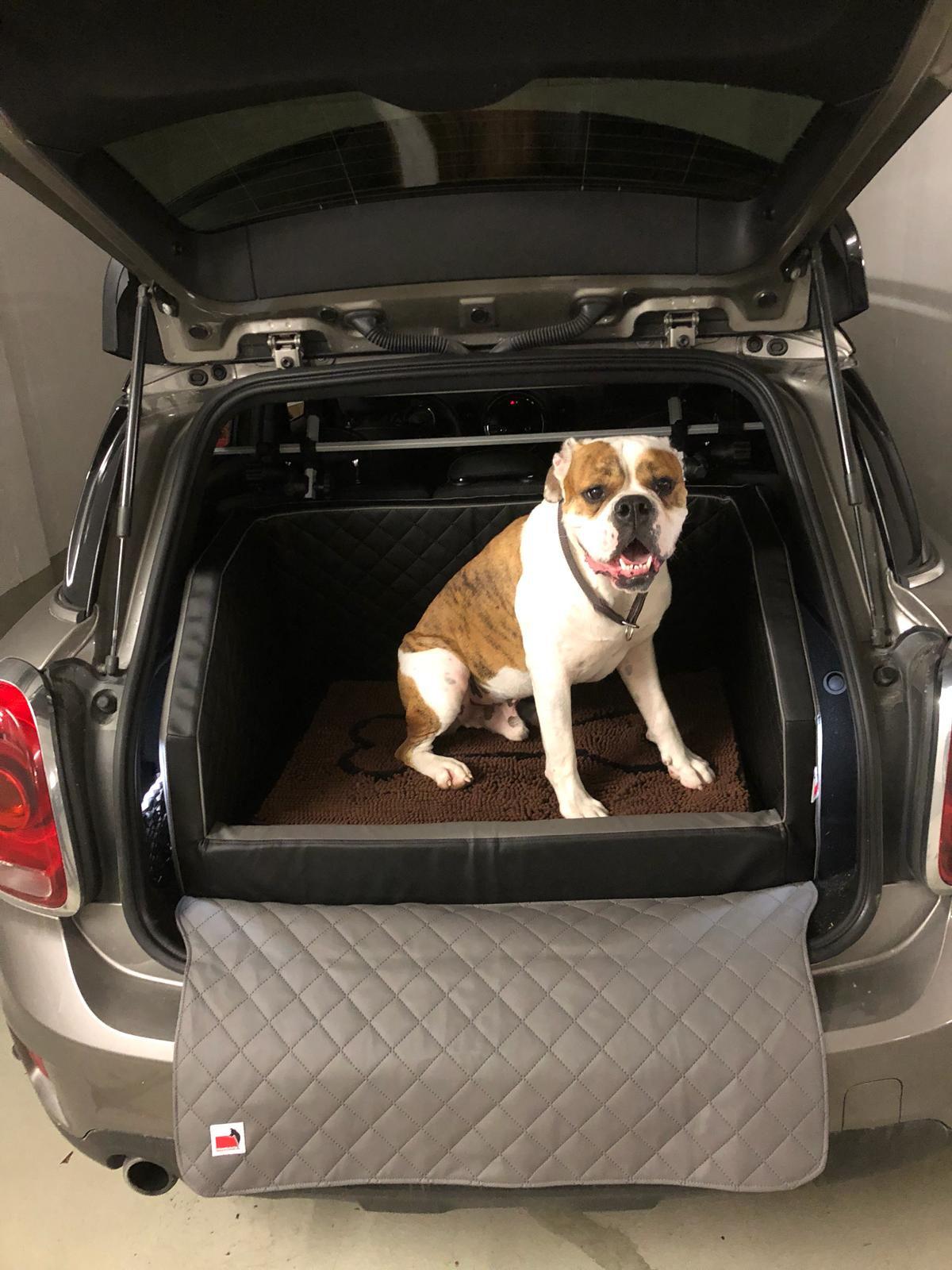 Travelmat Kofferraum-Hundebett 3.0