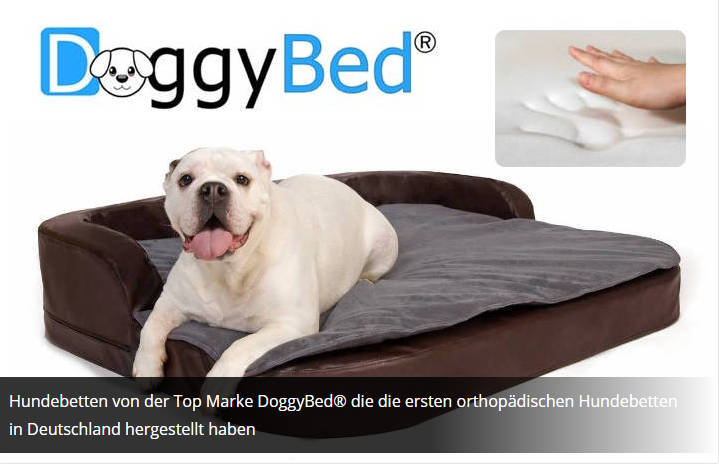 DOGGYBED Medical Style Plus Hundebett