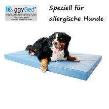 hundematte-fuer-allergische-hunde