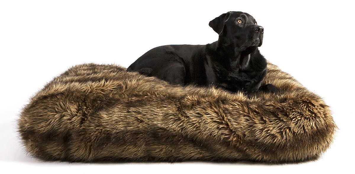 trixie 37571 winny kissen 60 40 cm schwarz braunschweig. Black Bedroom Furniture Sets. Home Design Ideas