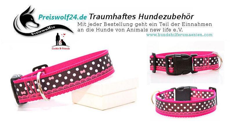 Hundehalsband Cutie pink, (3cm breit)