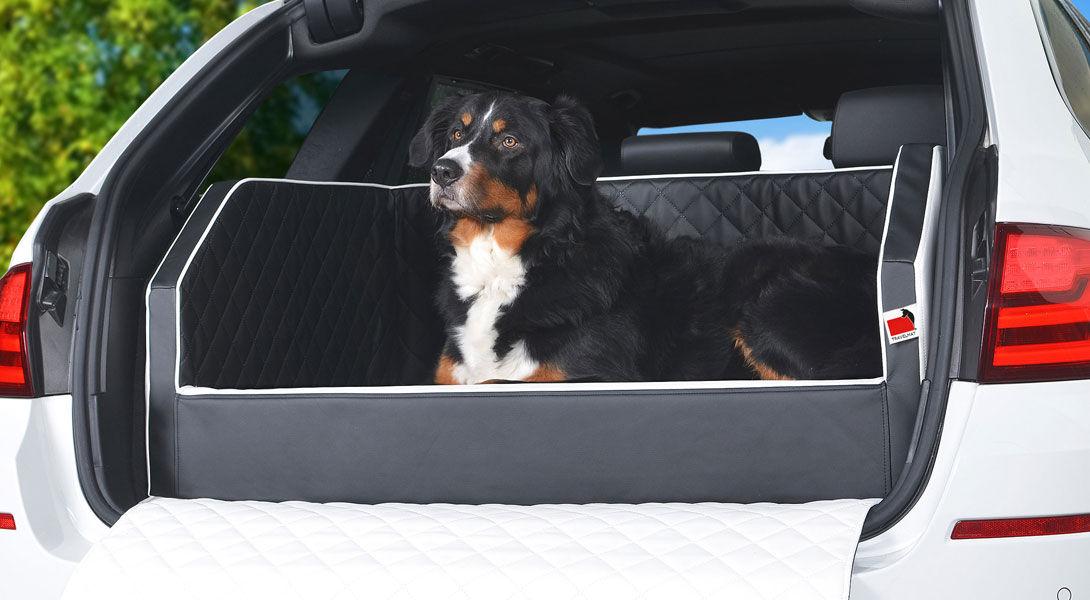 Kofferraumwanne Schutz