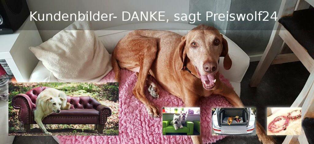 Preiswolf24 Hundesofas Kofferraum Hundebetten Kundenbilder