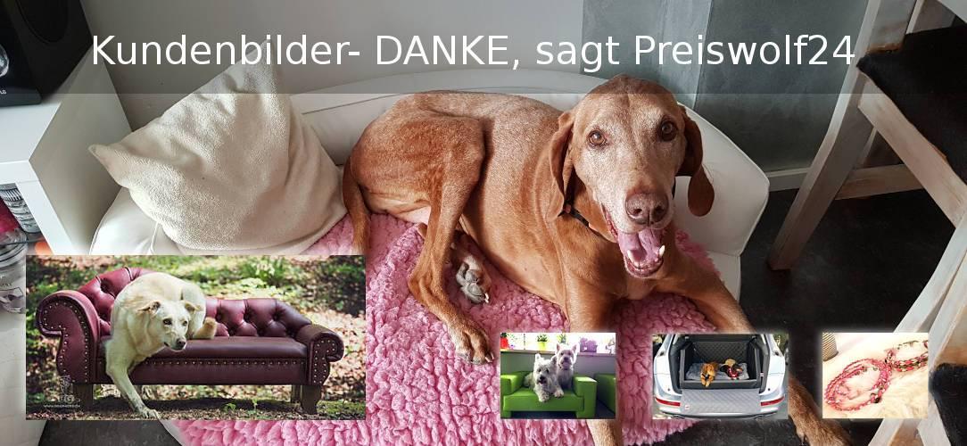 Preiswolf24 Kundenbilder Hundesofas Kofferraum Hundebetten