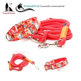 Hundehalsband-Tauhundeleine-Sommer
