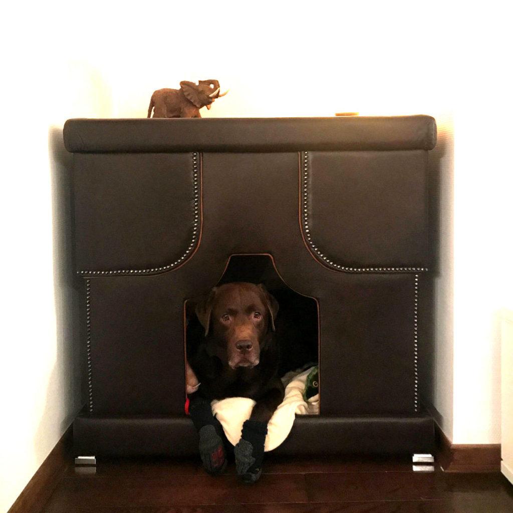 indoor hundehuette leder