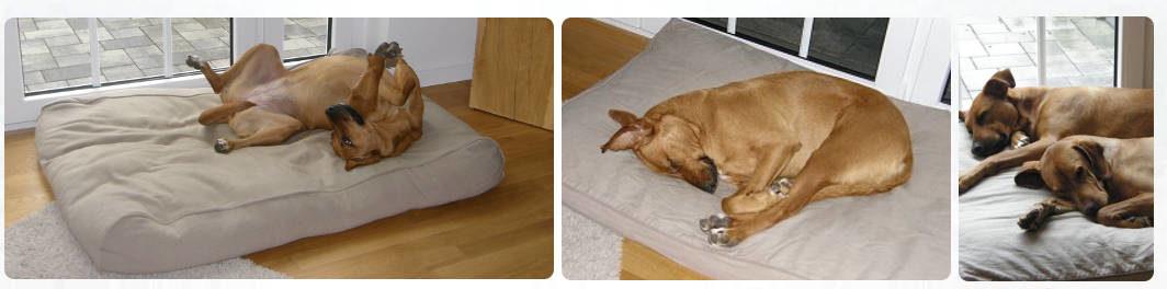 Gesunde orthopädische Hundekissen Hundebetten PETFAB Preiswolf24