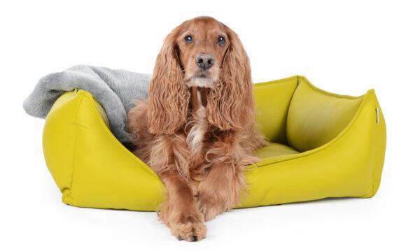 Hundebett Kunstleder Kiwi