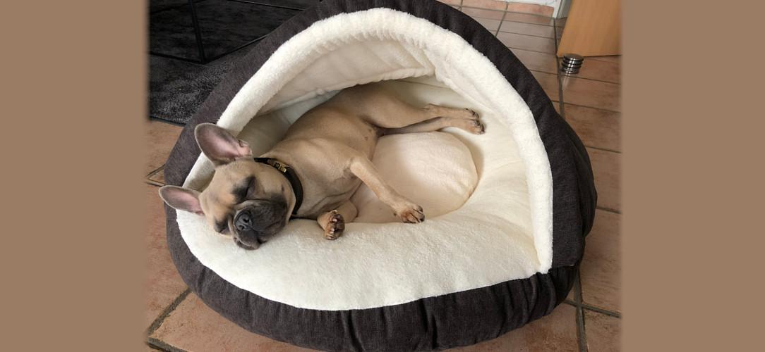 Hundehöhle warmes Hundebett Kuschelhöhle Winterbett für Hunde