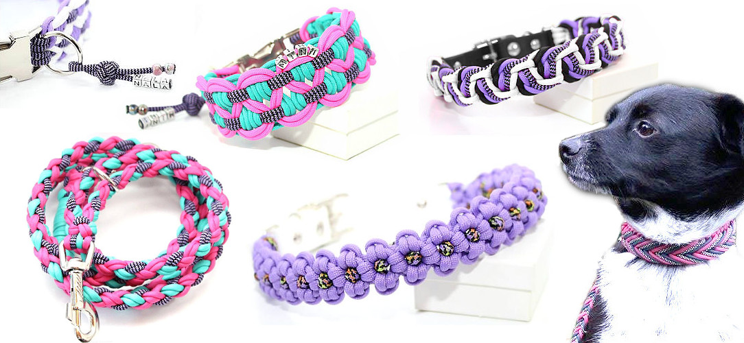 Paracord Hundehalsband Hundeleine top Qualitaet Cookie&Friends