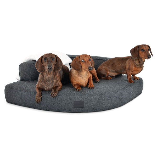 Eckhundebett Top Qualität