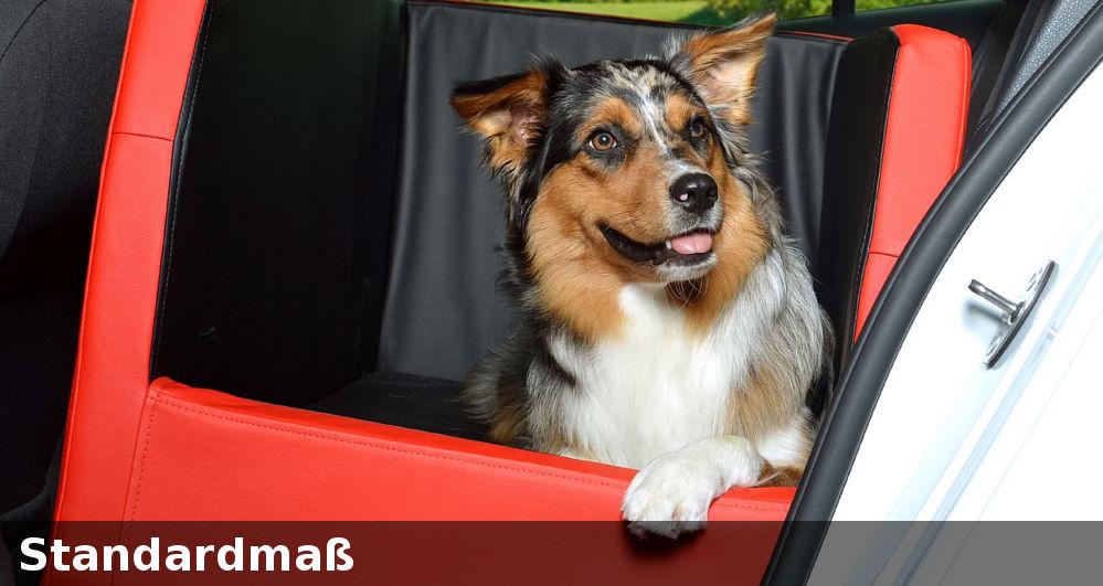 Hundesitz Autositz Transportbox Hundebox