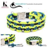 Paracod-Hundehalsband-big-wave-gecko-schwarz-blue-stipe